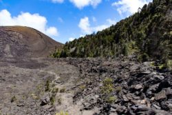 Ultimate Family Hike through Volcanoes National Park