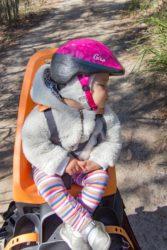 Biking Narrabeen Lagoon – A perfect summer ride!