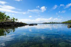Hawaiian Holiday Photo Recap