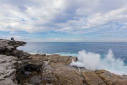 Federation Cliff Walk – Bondi to Watsons Bay