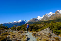 3 Beautiful Hikes in Milford Sound